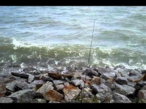 Pancing Ikan pancing ikan sembilang