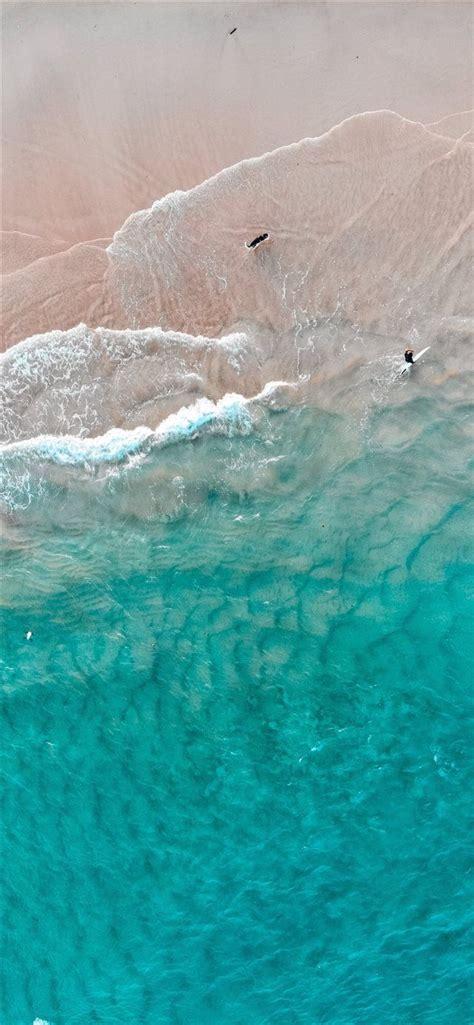 dogs dream iphone  wallpaper nature australia