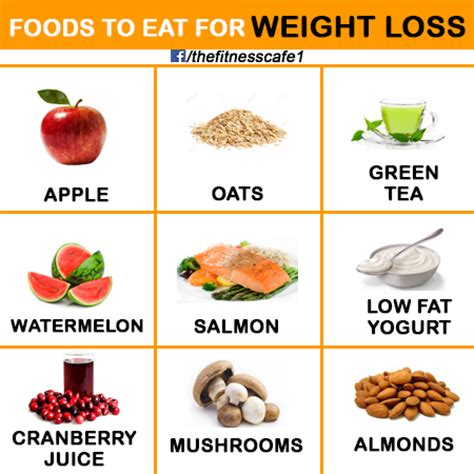 5 weight loss foods food for weight loss gain metabolism fitness
