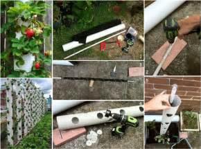 Vertical Strawberry Garden Prakticideas