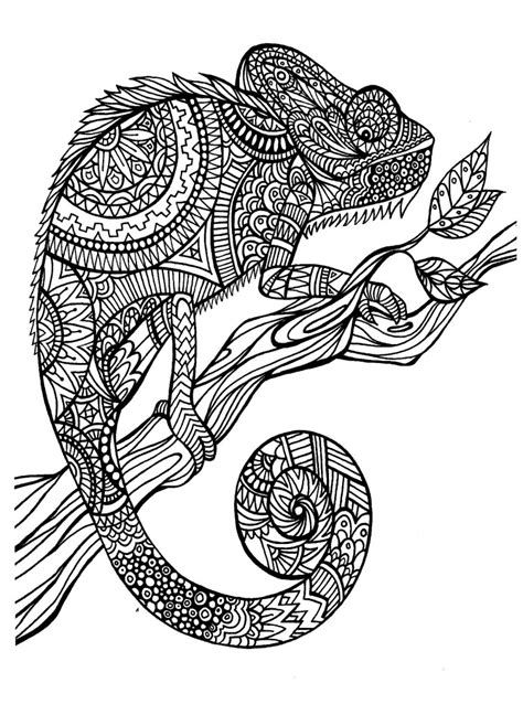 coloring books for boys animal designs zen doodled teenagers detailed inspirational coloring pages zen doodled pets leopards lions horses more children coloring books volume 2 books im 225 genes tipo mandala para colorear para ni 241 os y no