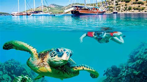 dive places best places for scuba diving in turkey go turkey tourism