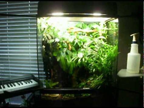 crested gecko terrarium entry for exo terra 2011 contest