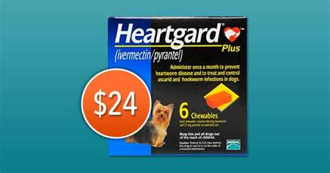 heartworm treatment cost what s the cost of heartworm treatment petcarerx