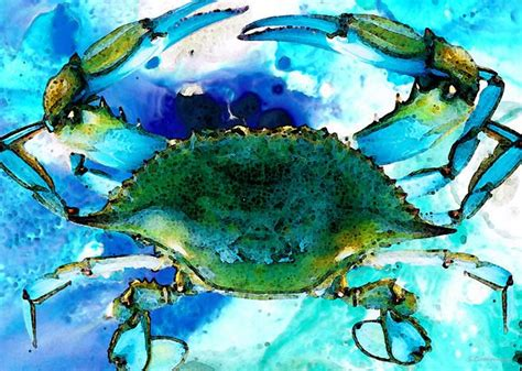 27 best images about blue crabs on pinterest crabs 27 best images about blue crabs on pinterest