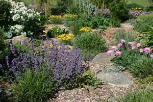 colorado xeriscape on pinterest colorado xeriscaping