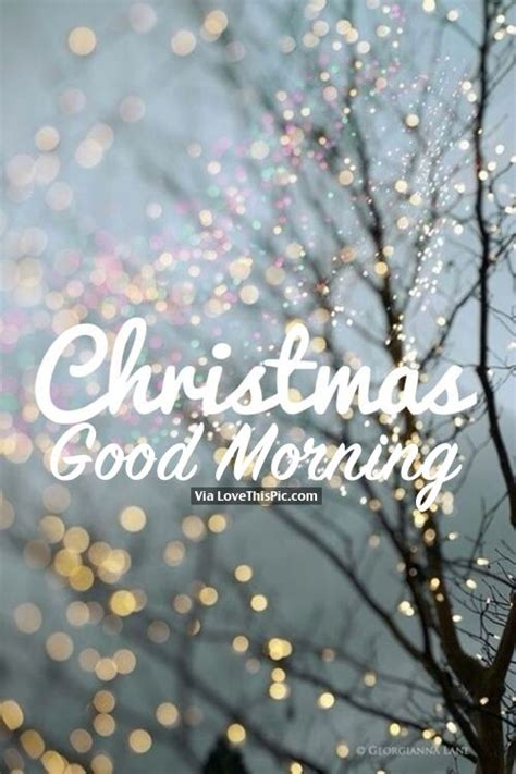 beautiful christmas good morning quote pictures   images  facebook tumblr
