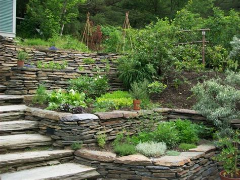 1000 images about landscaping on pinterest