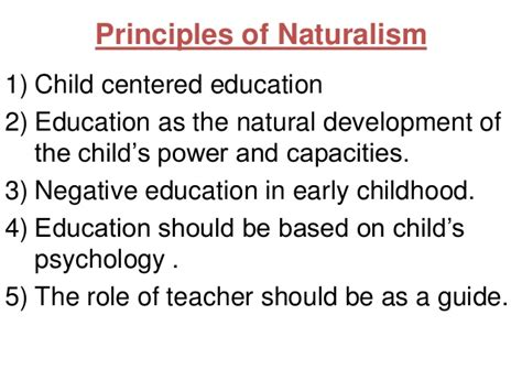 naturalistic pattern definition nursing philosophies