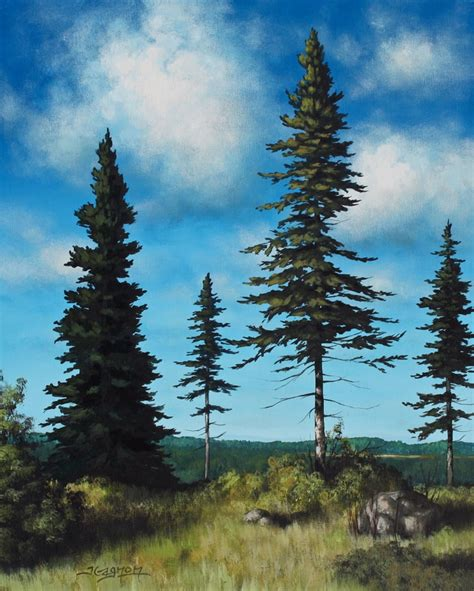 acrylic painting evergreen trees all the same but different acrylic on canvas tim