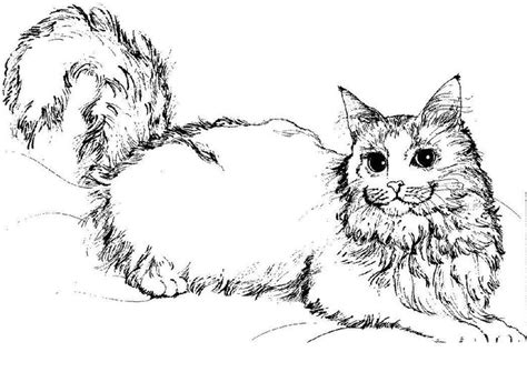 printable cat coloring pages  kids adult