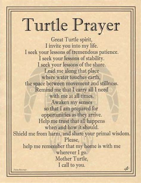 witches prayer turtle prayer poster a4 size wicca pagan witch witchcraft