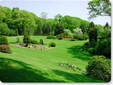 greenville spartanburg and greer sc landscaping