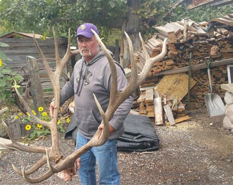 World Record Elk Sheds by Update More Photos Released Of Potential World Record