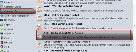 ac3 audio format zip mescheryakovinokentiy dolby ac3 audio format