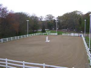 outdoor arena lights outdoor arena lights lighting and ceiling fans