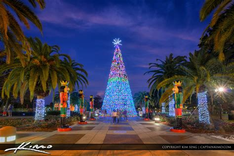 lake eola christmas tree video orlando downtown lake eola tree 2016 royal stock photo