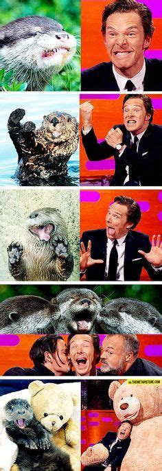 Cumberbatch Otter Meme - mary grandpre s lovely hp illustrations happy things pinterest mary harry potter and
