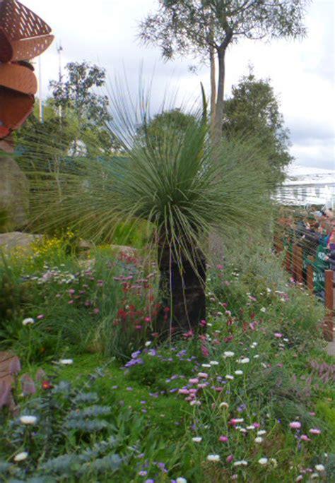 landscape designing  australian plants gardening