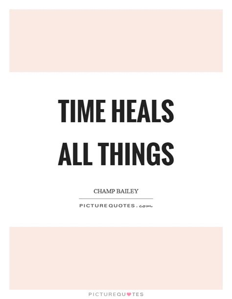 time heals all things books ch bailey quotes sayings 7 quotations
