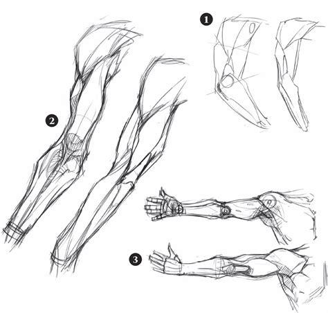 dolore interno spalla destra muscoli braccio parole chiave