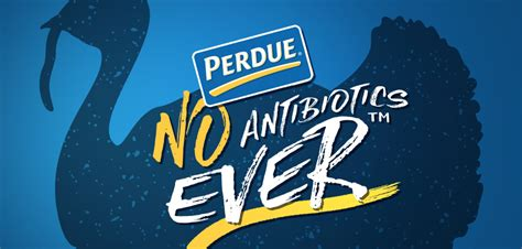 Search Now Free Perdue Foodservice Announces Entire Turkey Line Is Now Free From All Antibiotics
