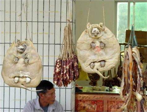what countries eat dogs on s best friend still eat dogs beware graphic images ed asia