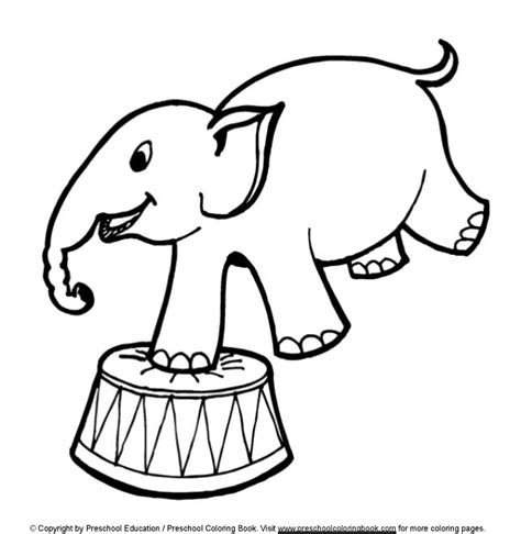 Circus Coloring Pages For Preschool www preschoolcoloringbook circus coloring page