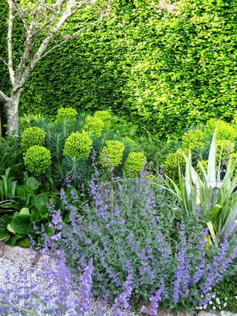 Cottage Garden Planting Scheme by 17 Best Images About Front Garden Ideas On