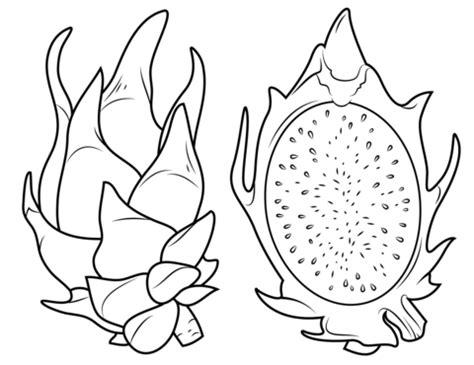dragon fruit clipart black and white clipartsgram com