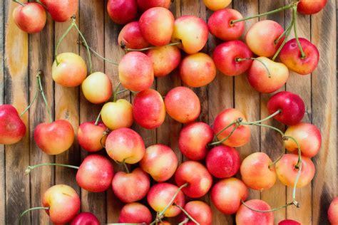 Cherry White white and chocolate dipped rainier cherries the