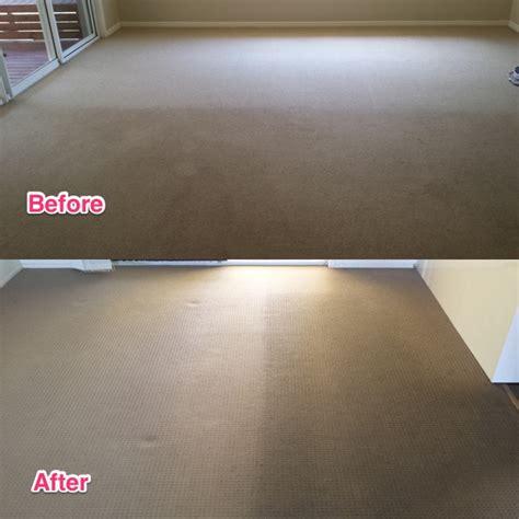 upholstery cleaning sunshine coast rug cleaning sunshine coast roselawnlutheran