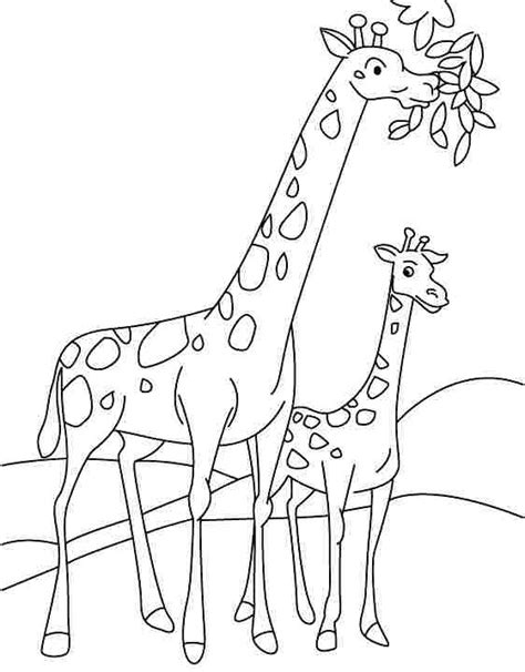 Preschool Coloring Pages Giraffe | preschool giraffe coloring pages 1 171 funnycrafts