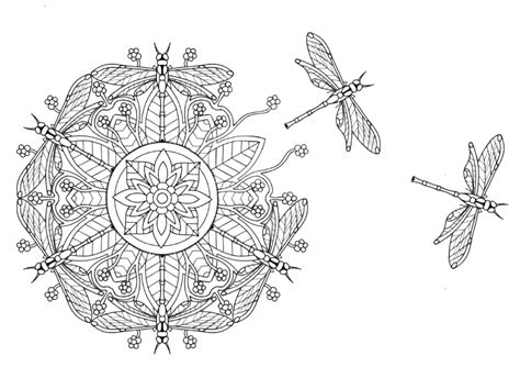 dragonfly mandala coloring pages fly dragonfly mandala coloring pages fly best free