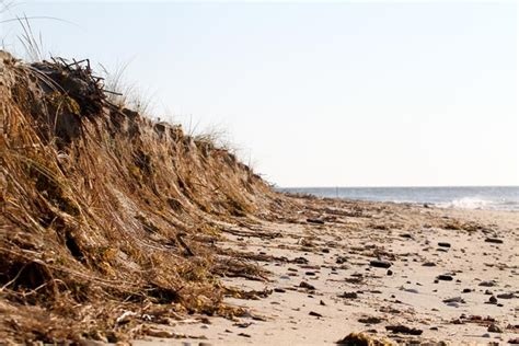 Chappaquiddick Wasque Causes Heavy Erosion From Chappy To Great Rock Bight Especially At Wasque The Vineyard