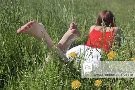 schwanger auf dem bauch liegen auf dem bauch liegend barfu 223 bl 252 hende fr 252 hlingswiese