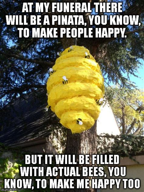 Bee Meme - bees to my pinata imgflip