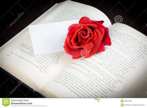 libro red rosa a graphic red rose on the open book with blank gift card for text stock photo image 40675146