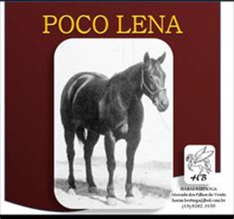 poco len poco lena my horses ancestory images