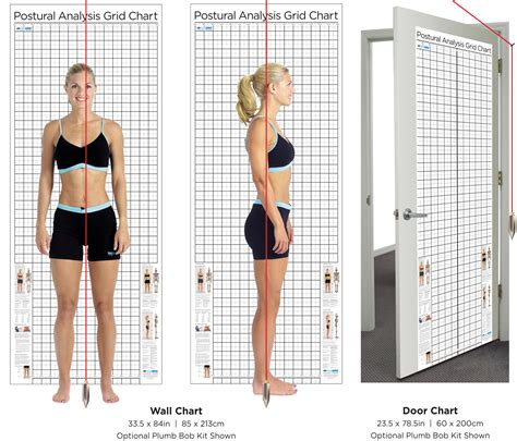 door size postural analysis grid chart kent health systems
