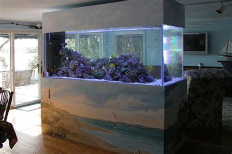 fish tank room design aquariums as stylish room dividers