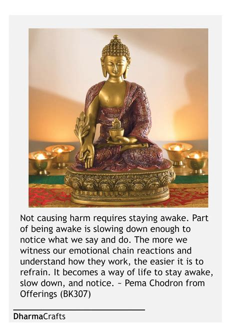 the wisdom of the buddha teachings in his own words shambhala pocket library books 2743 best images about buddha nature on