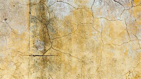 crepe muri interni crepe nei muri soluzioni