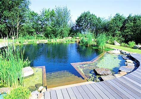 Beau Cout D Entretien D Une Piscine #4: piscine-naturelle.jpg