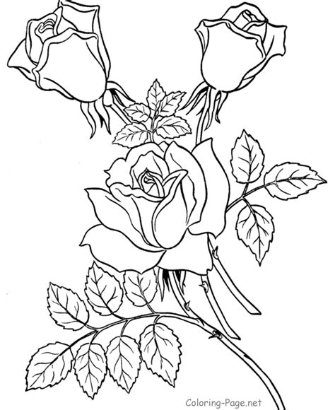 flower coloring pages twin roses