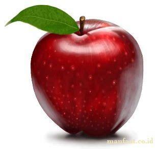 Apel Fuji 33 manfaat apel untuk diet dan untuk kesehatan manfaat co id