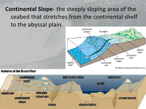 How Was The Continental Shelf Formed by L2 Morphology And Oceanic Water