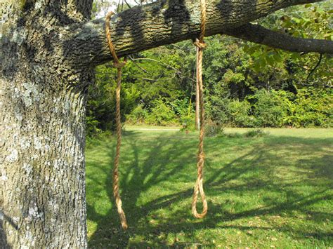 hang tree swing rope tree swing limb saver hanging rope by quarrydesigns