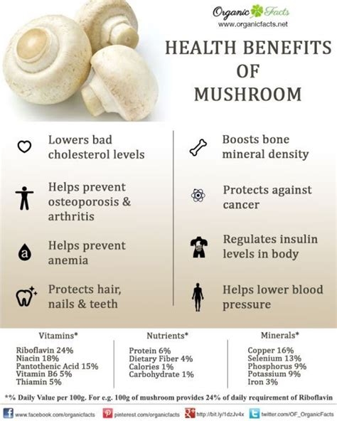 do healthy fats raise cholesterol benefits of mushrooms and cholesterol levels on