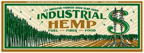hemp health revolution the a to z health benefits of hemp extract books welcome to cbd oils hemp the new health food